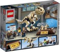 T. Rex-Skelett in der Fossilienausstellung